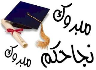 نتيجة الثانوية العامة عام 2013 من موقع مصراوى