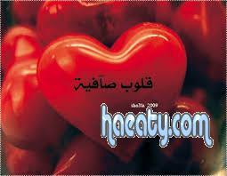 دردشة قلوب صافية – شات قلوب صافية – شات مصرى – دردشة مصرية