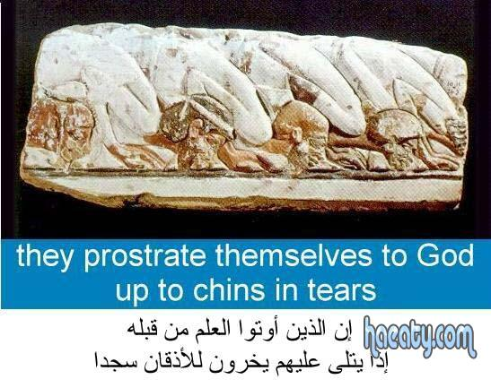 صور اكتشافات جديدة للحضارة الفرعونية 2014