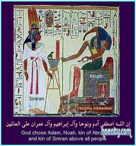 صور تفسيرات جديدة للحضارة الفرعونية 2014