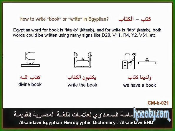 اهمية الكتاب فى الحضارة الفرعونية 2014
