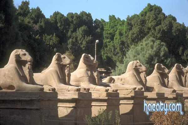 صور مصر الفرعونية