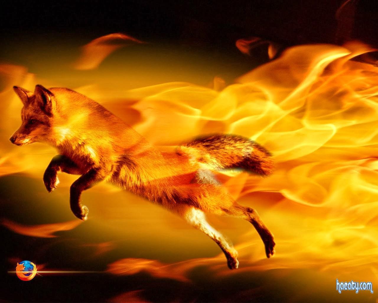 تحميل برنامج موزيلا فايرفوكس 28 مجانا  Download Mozilla Firefox 28 for free